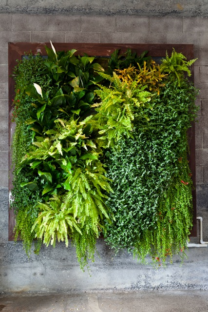 Plants On Walls Vertical Garden Systems New Zeland: green walls vertical planting systems