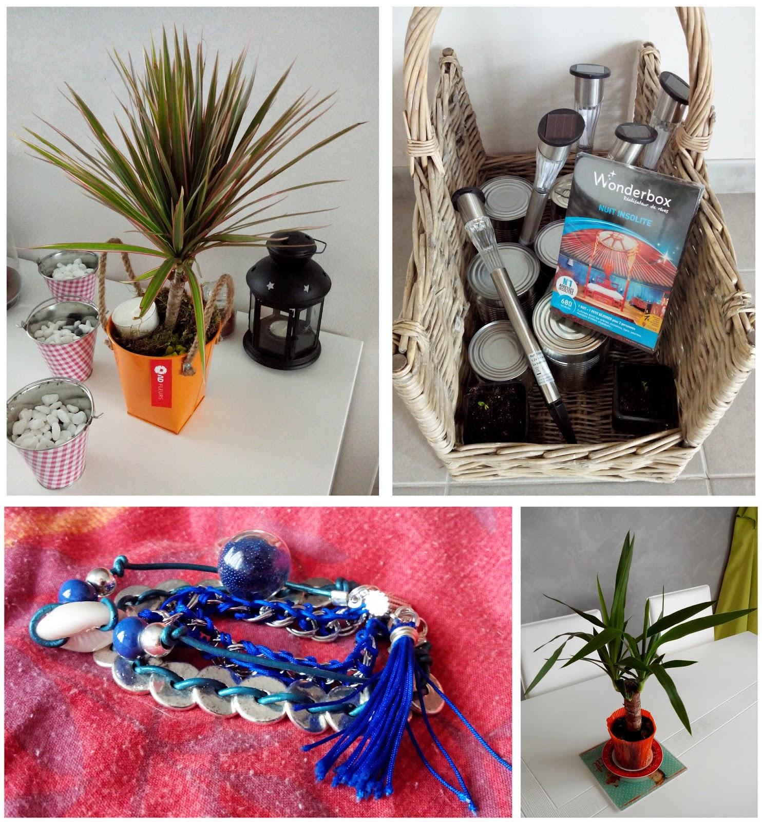 cadeaux, crémaillère, plante, bijoux, wonderbox, bull'elodie