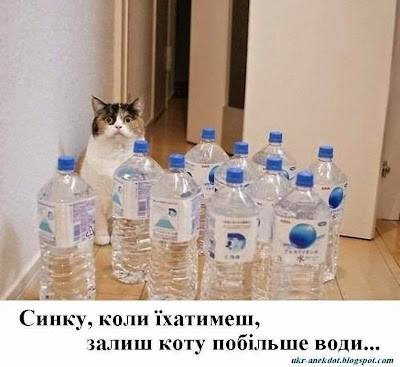коту води