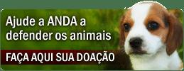 ANDA -Agência de Nóticias de Direitos Animais