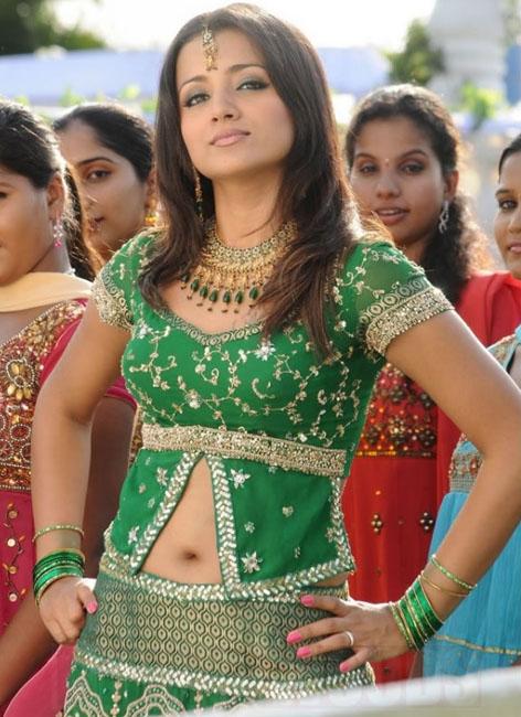 trisha krishnan gopichand shankam movie stills pictures2