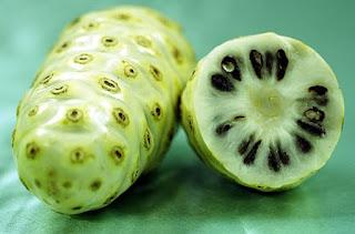 buah mengkudu untuk kesehatn