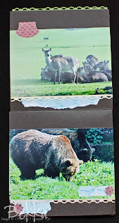 Whipsnade Zoo Mini Book
