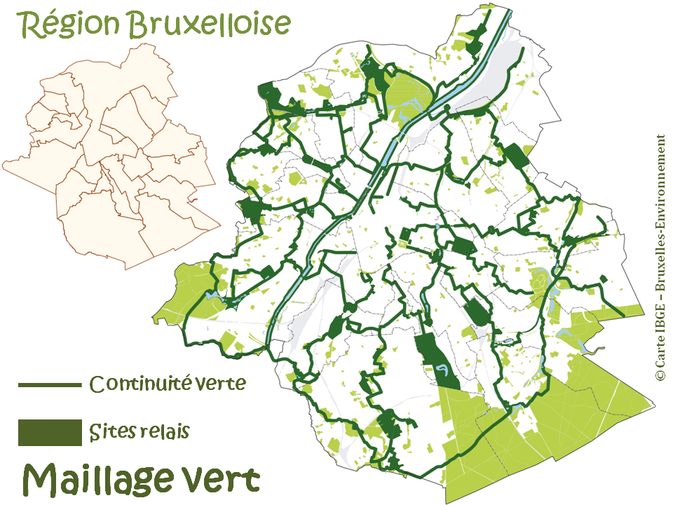 """Guide de la promenade verte à Bruxelles - Le """"maillage vert de la Région bruxelloise""""  (IBGE-Bruxelles Environnement) - Bruxelles-Bruxellons"""