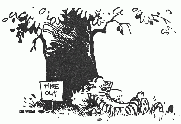 Calvin and Hobbes time out cartoon