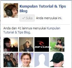 Cara Memasang Fans Page Facebook Tersembunyi