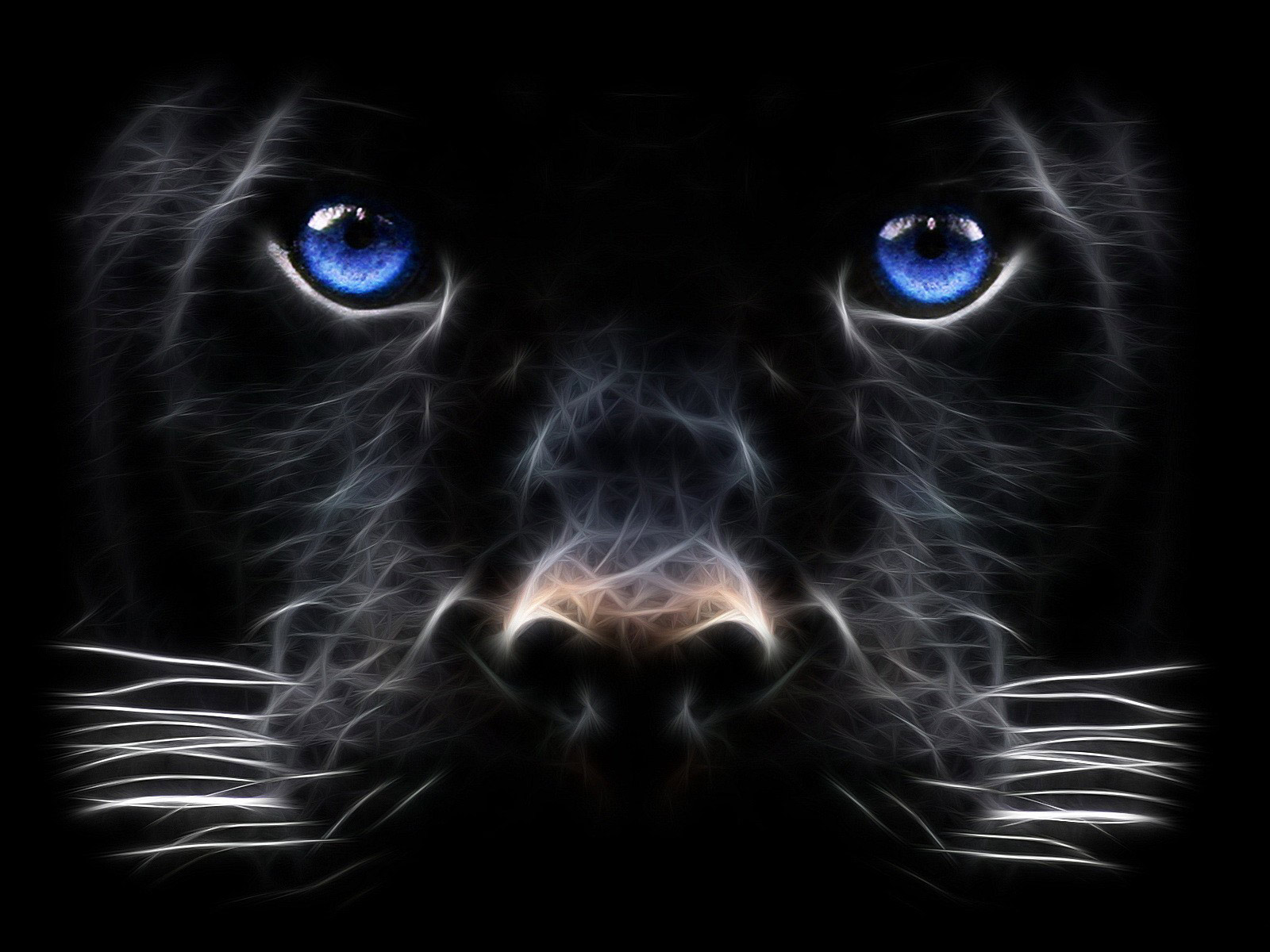 Backgrounds Windows Black Panther