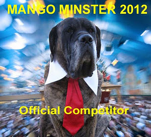 official seal of the mango minster contest, featuring brindle mastiff mango himself, in shirt and tie