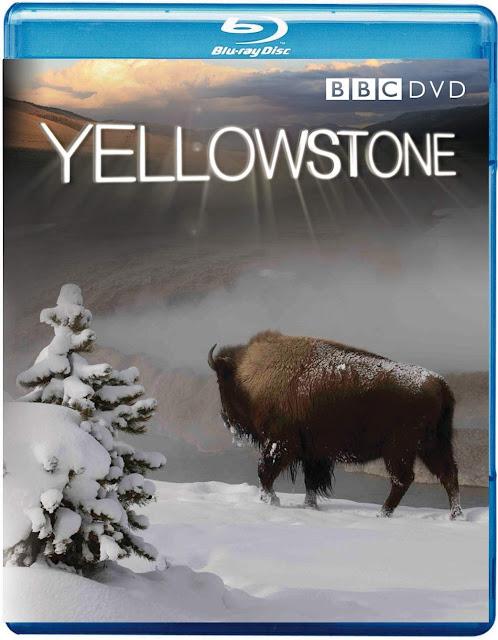 BBC 6GB Yellowstone FullHD 1080p 3/3 MEGA Taykun7000