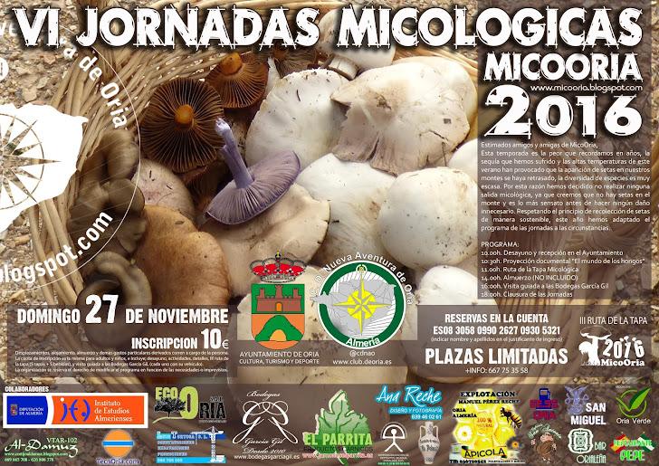 Micología en Oria :: MICOORIA