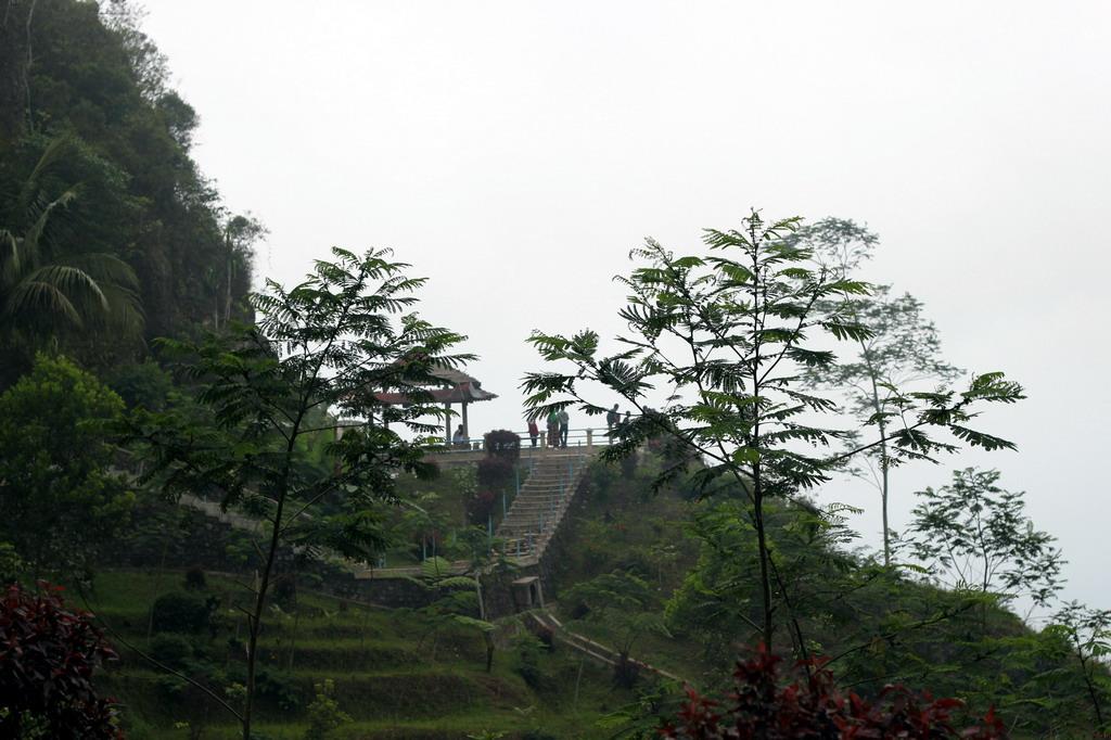 Goa Seplawan adalah salah satu goa yang berada di kabupaten Purworejo Beaches in Bali; Great Seplawan Cave