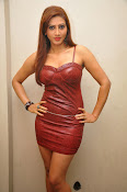 Actress Rishika Sizzling Photo shoot Gallery-thumbnail-10