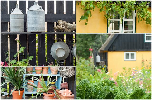 stilleben i haven