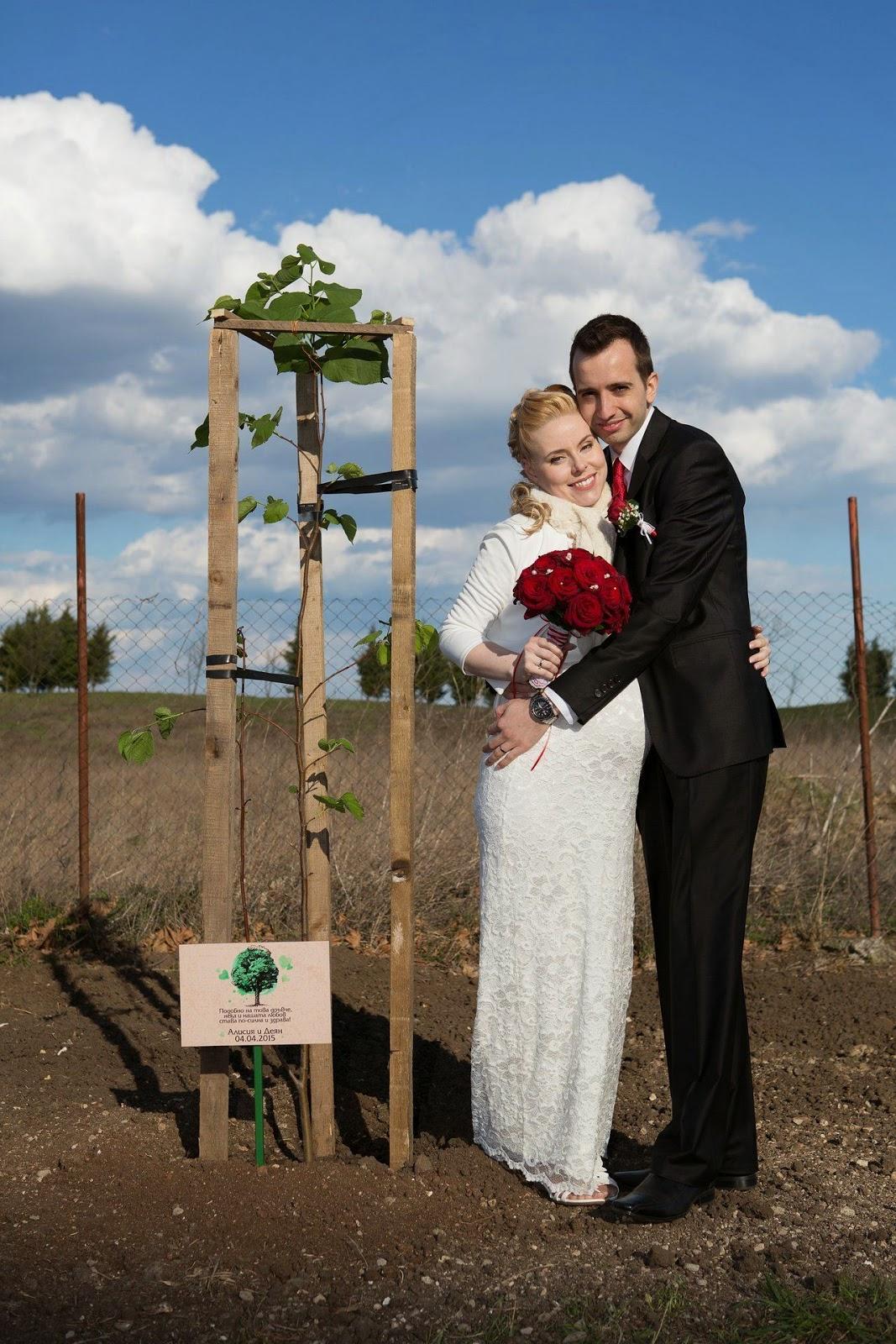 младоженци засаждат дърво в деня на сватбата си