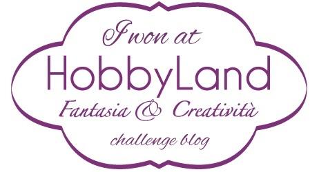 ho vinto su Hobbyland: