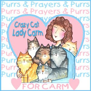 Purrs and hugs for Carm