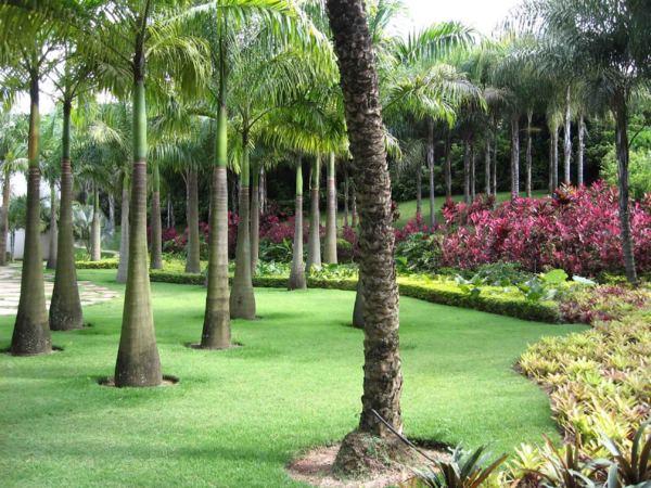 """decoracao para jardim de sitio : decoracao para jardim de sitio:Movimento Ordem Vigilia Contra Corrupção: Denúncia: """"Paraíso da"""