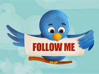 3 Widget Follow Me On twitter Animasi