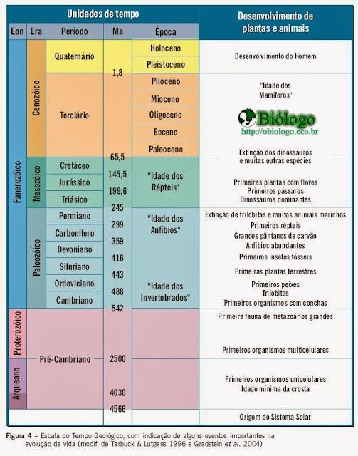 tabela, eras, geologicas, biologia