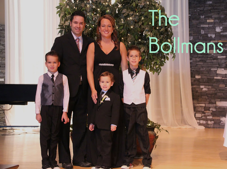 The Bollmans