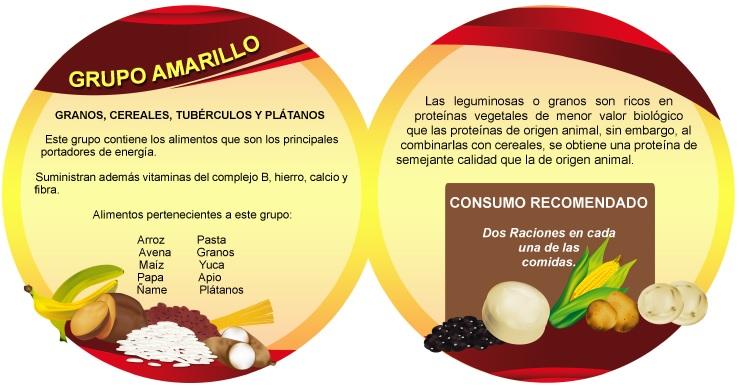 Trompo alimenticio (Nutrición para la vida) - Identi