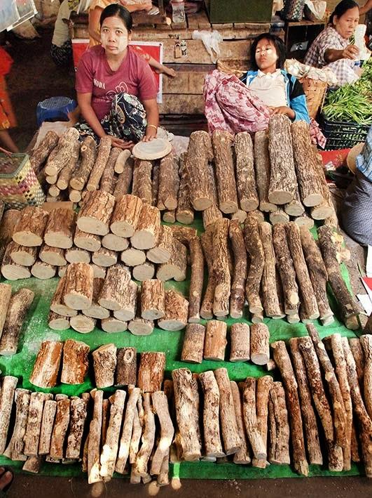 Thanaka wood - Mani Sithu market, Nyaung-U, Bagan