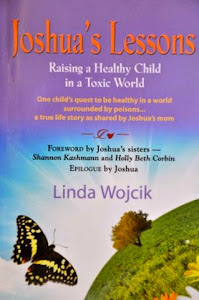 Click on Joshua's Lessons below to purchase Linda's new book