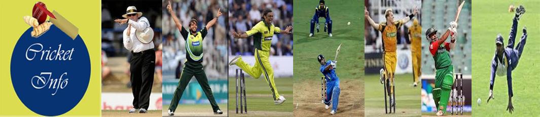 Cricket info
