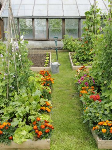 Sfumature Verdi Progetti Giardini