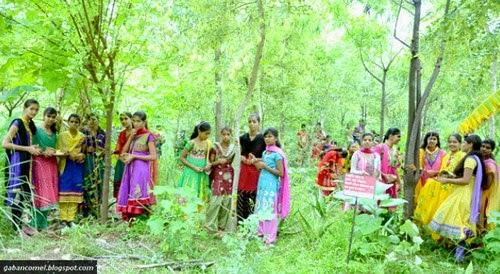 Unik Kampung di India Budayakan Tanam 111 Pokok Tiap Kelahiran Bayi Perempuan