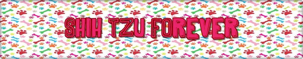 Shih Tzu Forever