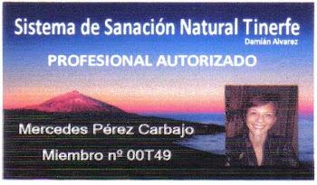 Profesional Autorizado