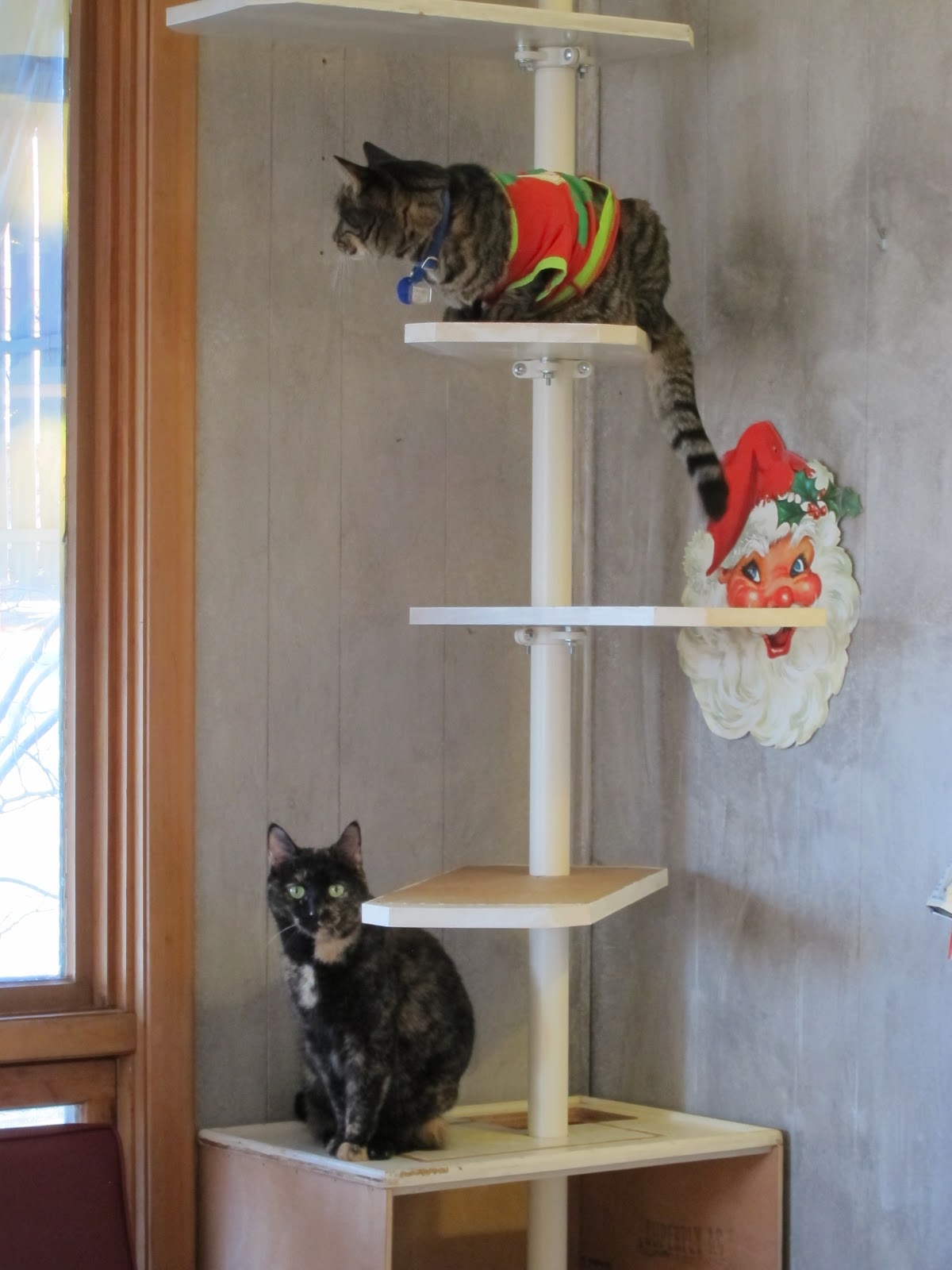 Pressure Fit Custom Cat Tree