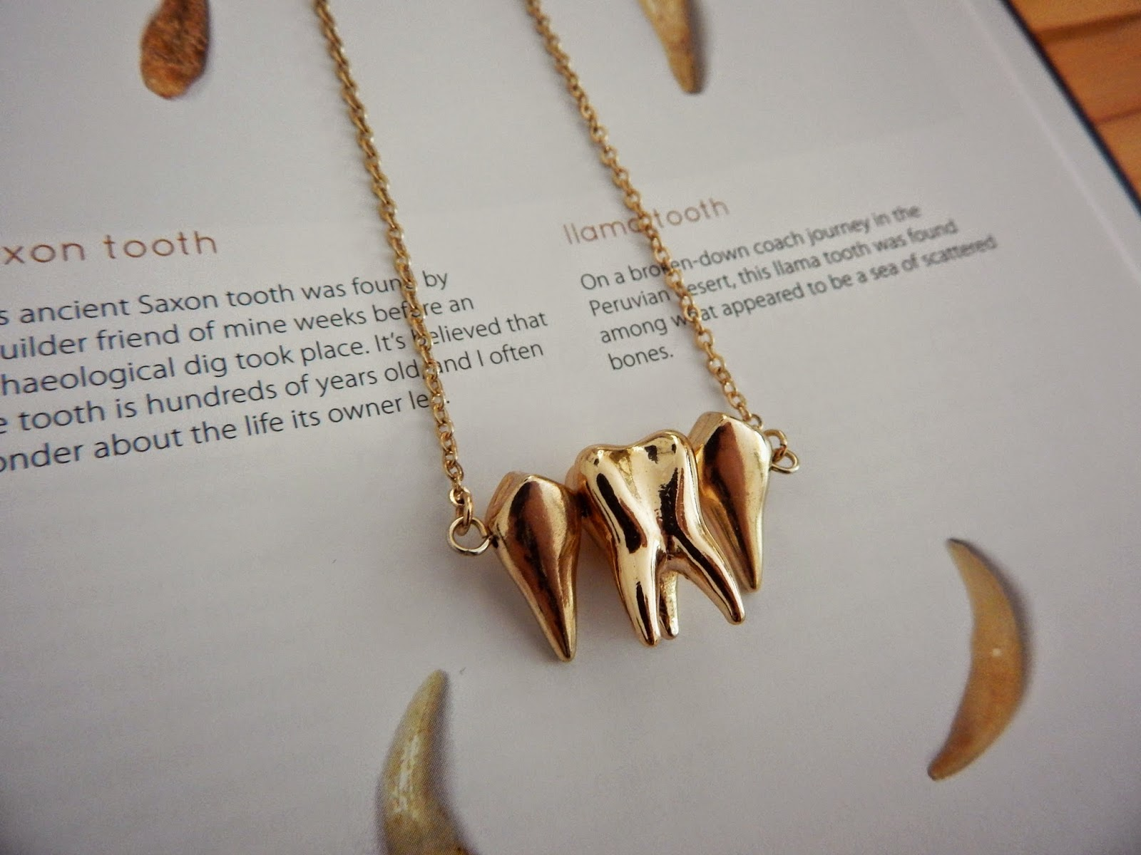 Ebay Wisdom Tooth Necklace