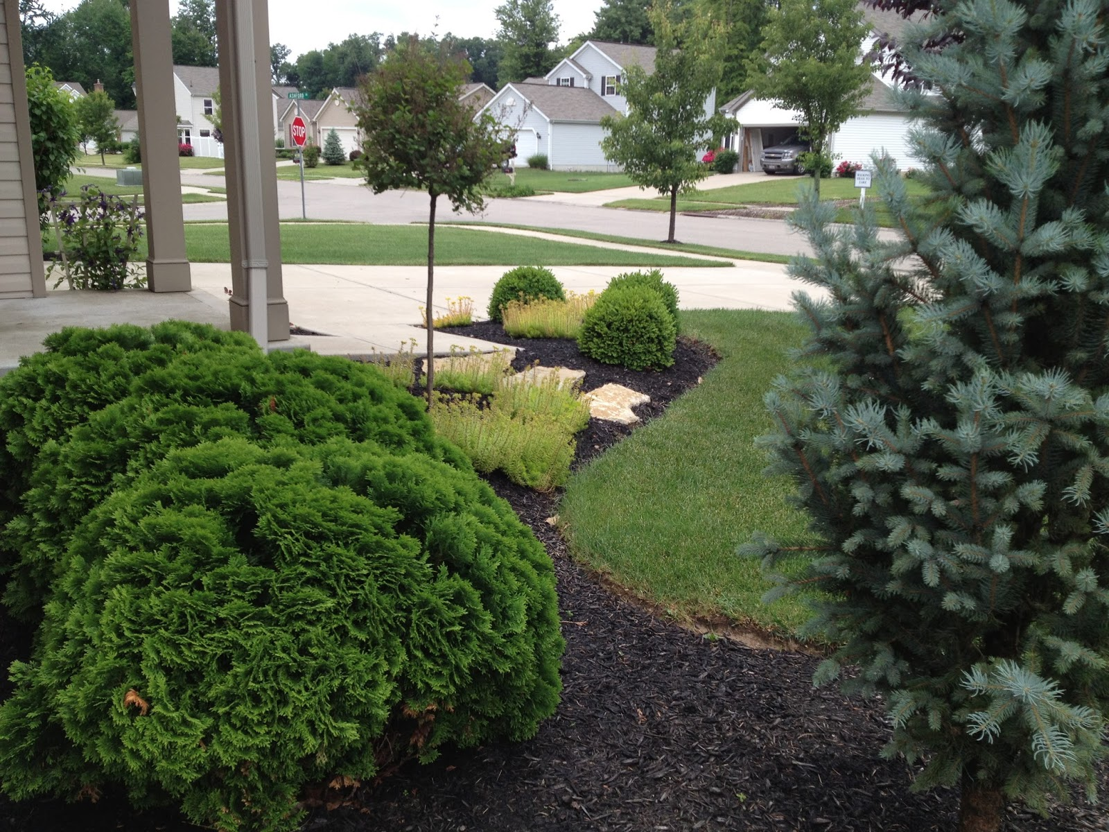 MY LIFE BY DESIGN Landscaping Update The Front Yard