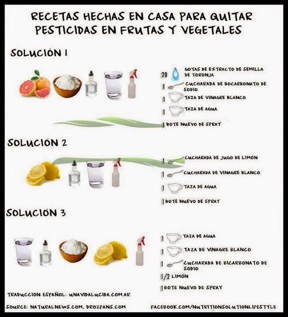 Huerta de ciudad c mo desinfectar naturalmente frutas y for Alelopatia en hortalizas