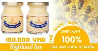 Sữa ong chúa tươi Highland Bee