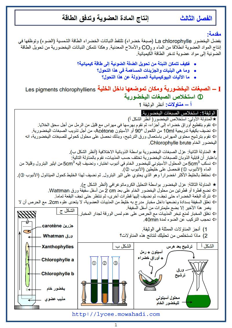 انتاج المادة العضوية و تدفق الطاقة 1