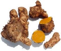 Label: Ramuan alami untuk tipes • tanaman obat alami penyembuh tipes