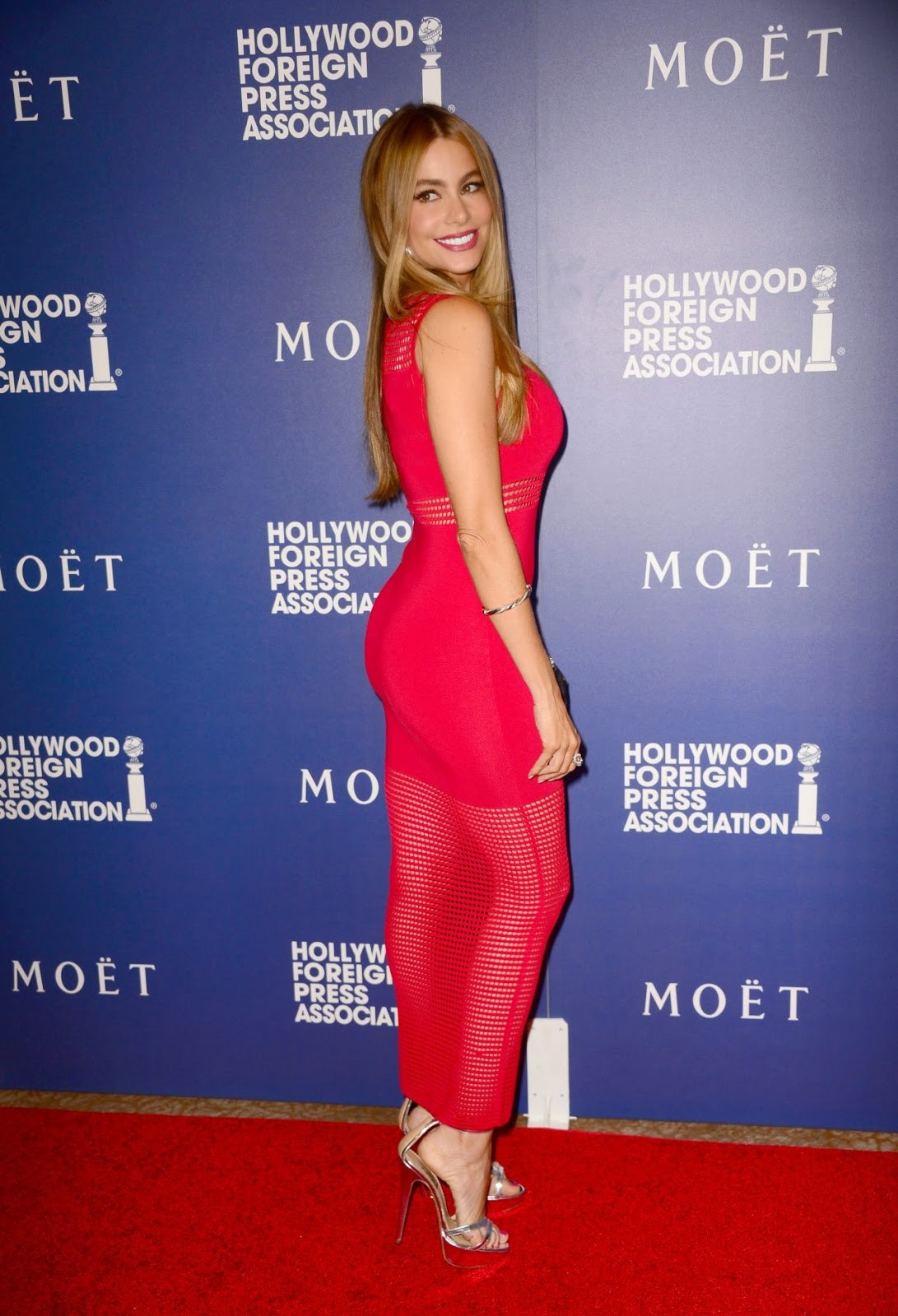 Sofia Vergara shows off curves at the 2014 Hollywood Foreign Press Association's Grants Banquet