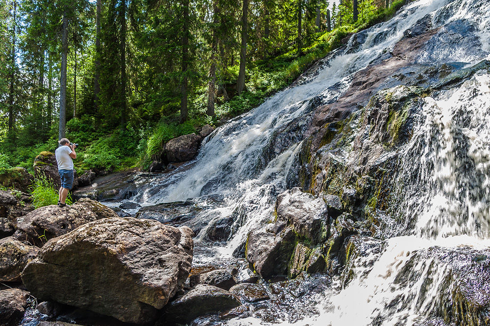BILDOGRAFi och FOTOGRAFi: Västernorrland - Naturfotograf