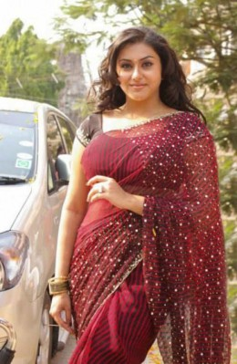 South indian actress namitha showing navel through saree