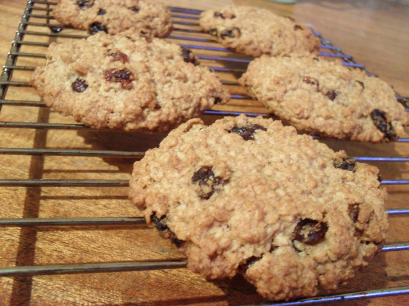 Big Fat Chewy Oatmeal Raisin Cookies | Knitting on Trains