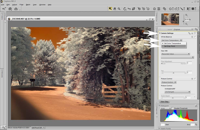 A different light digital workflow 2 white balance nikon cnx2 screenshot baditri Gallery