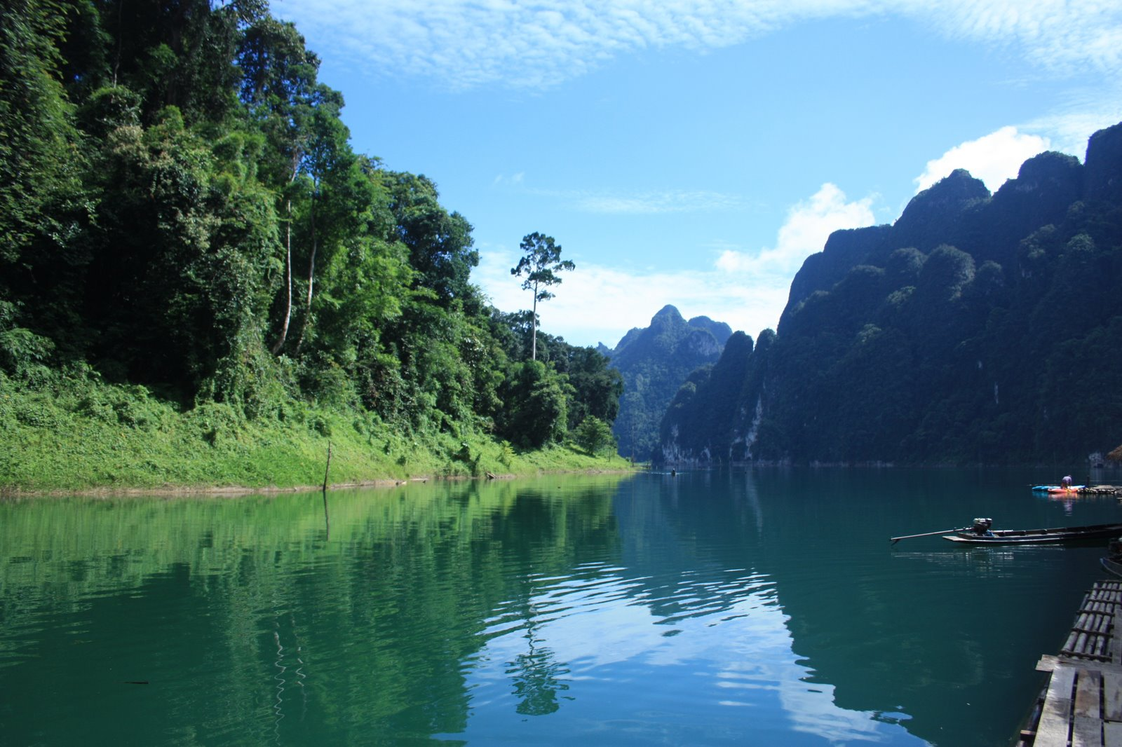 Khao Sok (Suratthani) Thailand  city photos gallery : ... of Pride: Khao Sok national park, Suratthani, Thailand Photo 5 of 6