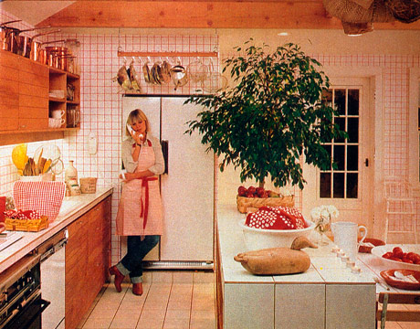 Slv some like it 1970s kitchens from the past for Retro kitchen ideas 1970