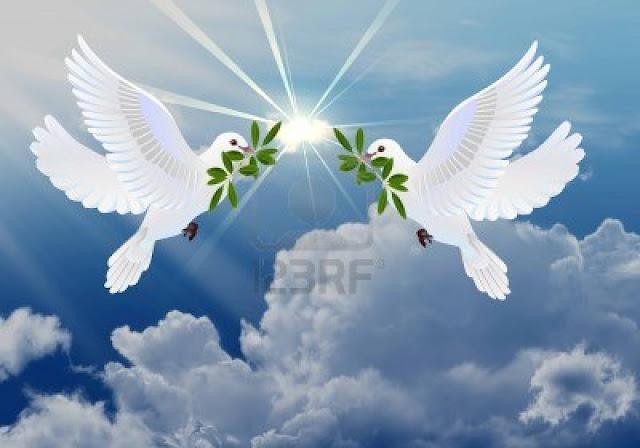 las palomas de la paz - Banco de Imágenes: Fotos Libres