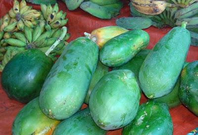 Manfaat Getah dan buah Pepaya Muda