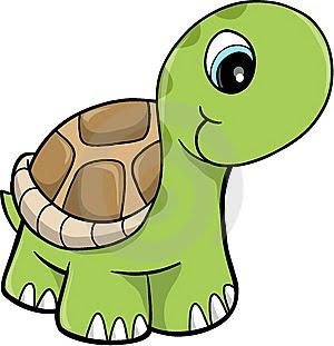 Tercer a o a mayo 2011 - Image tortue rigolote ...