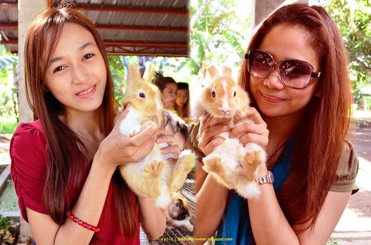 Travelog: The Robby Rabbitry Farm